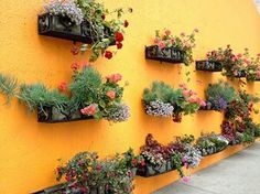 Garden Wall Apartment Balcony Garden, Small Balcony Garden, Balcony Gardening, Garden Pool, Herb Garden, Side Yard Landscaping, Mailbox Landscaping, Unique Gardens, Amazing Gardens