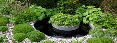 RHS Chelsea Flower Show 2013 /First Touch Garden by Tendercare, Scena Productions LLP