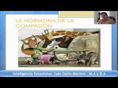 Seminario Inteligencia Emocional - YouTube
