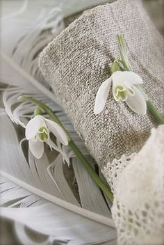 snowdrops, feathers and linen