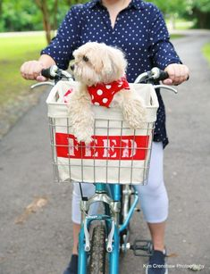 Turn a metal storage bin into a stylish riding accessory with this upcycled bike basket tutorial!