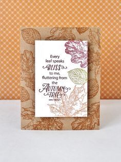 Joy Clair - Amy Tedder's Hello Autumn Stamp collection.  Card design by Jessica…