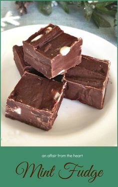 Mint Fudge smooth and silky. Perfectly minty! #fudge Holiday Cookies, Holiday Treats, Holiday Recipes, Family Recipes, Healthy Desserts, Delicious Desserts, Yummy Food, Chocolate Fudge, Mint Chocolate