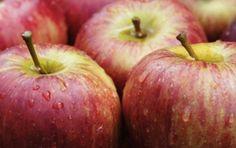 Tutti i trucchi per dimagrire grazie all'aceto di sidro di mele - Per perdere…