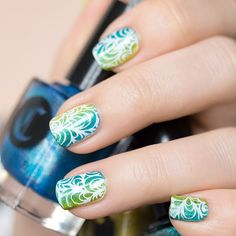 Blue and green gradient with white stamping