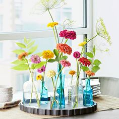 Check out 6 tips for growing and displaying colorful zinnias.