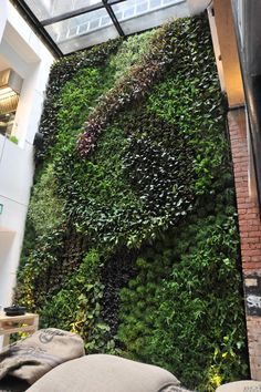 30 Best Commercial buildings with living walls images in