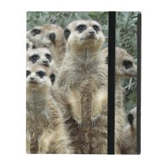 @@@Karri Best price          Meerkat003 iPad Covers           Meerkat003 iPad Covers Yes I can say you are on right site we just collected best shopping store that haveReview          Meerkat003 iPad Covers today easy to Shops & Purchase Online - transferred directly secure and trusted checkout...Cleck Hot Deals >>> http://www.zazzle.com/meerkat003_ipad_covers-256586886871555353?rf=238627982471231924&zbar=1&tc=terrest