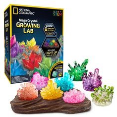 National Geographic Mega Crystal Growing Lab – 8 Vibrant Colored Crystals to Gro for sale online Cool Gifts For Kids, Gifts For Girls, Holiday Fun, Holiday Gifts, Growing Crystals, Unique Gifts, Best Gifts, Maps For Kids, Scratch Art