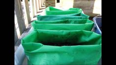 Make Planters Out of Grocery Bags