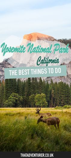 Your ultimate guide to the best things to do in yosemite national park in California, USA. From the best hikes such as the Muir Trail and Yosemite Falls to grabbing a beer in Yosemite Village!
