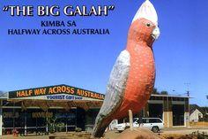 Big things | Big in Australia | The Australian