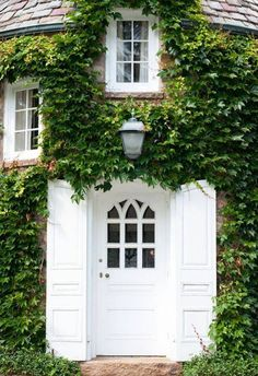 stark white For the ivy-covered exterior that manages to steal the spotlight from the remaining elements of the home, consider a paint color in a deep contrast such as white or black. This whitewashed entry not only stands out against its surroundings, it also inspires an eye-catching detail of its own.   Recreate this look with... Snow White by Benjamin Moore Ultra Pure White by Behr