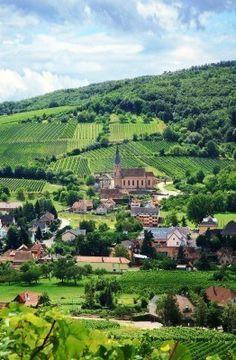 Route Des Vines In Alsace, France