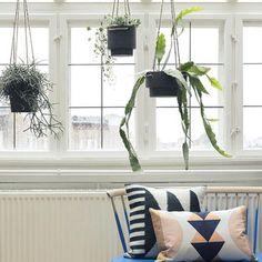 ferm LIVING Plant Hanger Blumentopf #Blumen #Pflanzen #Topf #Aufhänger #Deko #Galaxus