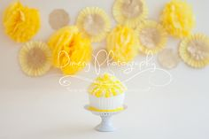 Yellow and gold cake smash, natural light photography, © Dimery Photography #cakesmash