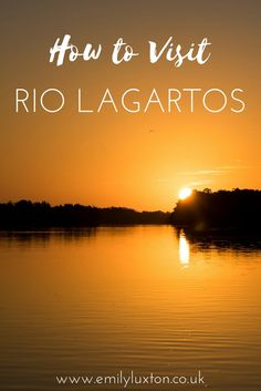 Discover the Secrets of Rio Lagartos in Mexico. How to plan your trip, and what to see in and around Rio Lagartos and the nearby reserve.