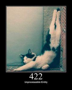 「404+Not+Found」などPCのステータスコードを体現した猫の写真がかわい過ぎる!!