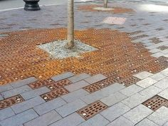 A clever way of introducing a SUDS style drainage for a tree