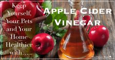 10,606Shares Share Pin Tweet Email Apple cider vinegar is an age-old remedy that has a surprising number of uses, and while whole books have been written on this amazing remedy, many of us are still unaware of just how usful apple cider vinegar (ACV) can be. The following are just a few of the ways that we …