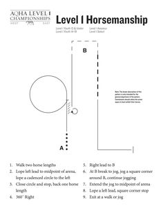 Level 1 horsemanship pattern for the 2015 AQHA Level 1 Championships