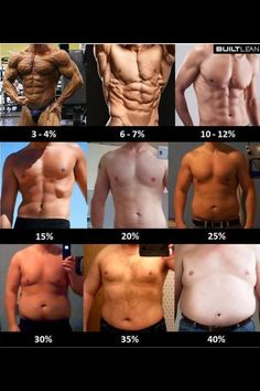 Men's body fat %'s