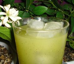 Kiwi Lemonade. Photo by CoffeeMom  (You can also make this regular or sparkling)