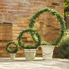 Wreath Ivy Topiaries