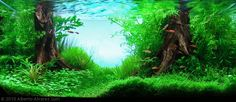Manage your freshwater aquarium, tropical fishes and plants: AGA Aquascaping Contest 2010 Results