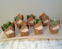 Recuerdos ecológicos de Ecobrand | Foto 5 recuerdo, regalo, boda, matrimonio, plantas, ecológico