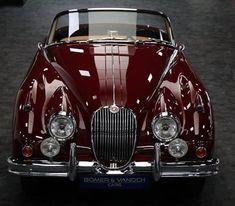 Vintage Cars, Antique Cars, Jaguar Daimler, Classy Cars, Best Classic Cars, Cabriolet, Jaguar E Type, Jaguar Sport, Sweet Cars