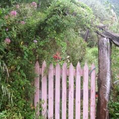 Where does this gate take you?