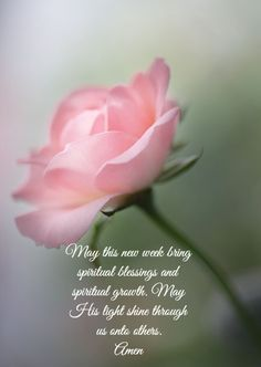 New Week Inspirations Monday Blessings, Morning Blessings, Morning Prayers, Favorite Bible Verses, Bible Verses Quotes, Bible Scriptures, Christian Love, Christian Quotes, New Week Prayer