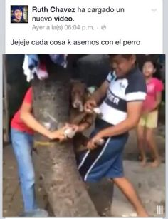 Punish Mexican teenager that tied helpless dog to a tree just to amuse himself!                In his spare time, Ruth Chaves likes to take on animals. In a recent video he posted on his Facebook account, he and his fri...
