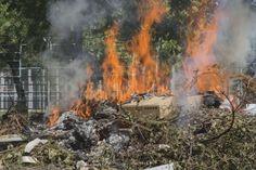 #Risarcimento da #danno #ambientale #Assistenza #Legale #Premium http://www.assistenzalegalepremium.it/risarcimento-da-danno-ambientale/