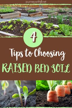 Gardening For Beginners So you've built your raised beds. Your DIY project is ready for the next step! What kind of soil is best for your garden on your budget? Listen to these 4 simple tips to get on the right track for your vegetable garden. Raised Garden Bed Soil, Soil For Raised Beds, Garden Pests, Garden Insects, Garden Fertilizers, Container Vegetables, Organic Vegetables, Container Gardening, Veggies