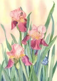 Risultati immagini per iris art