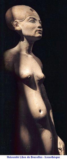 Nefertiti Universite Libre de Bruxelles-Iconotheque egyptian figurative sculpture.
