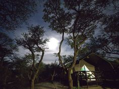 Whether you're looking for a romantic break or an affordable getaway, these 12 tented camps are just what you need for an ultimate, no-fuss nature escape. Romantic Breaks, Game Lodge, Close To Home, Africa Travel, Tent Camping, Lodges, South Africa, Safari, Travel Destinations