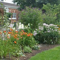Daylilies Bloom Among Many Other Perennials In One Of The Viette Gardens Companion Planting