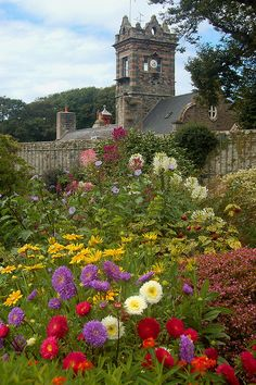 Seigneurie Gardens, Isle of Sark ...amazing gardens and out of this world stargazing...on my bucket list:)