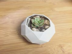 Planter V8 - Low Poly Planter by Keagan_Exsteen - Thingiverse