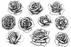 Rosen Tattoo Frau, Rosen Tattoos, Stencils Tatuagem, Tattoo Stencils, Rose Illustration, Body Art Tattoos, Hand Tattoos, Sleeve Tattoos, Tattoos Skull