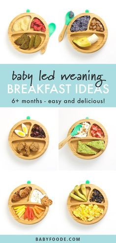6 Baby-Led Weaning Breakfast Ideas (Easy to Make!) - Baby Foode - 6 Baby-Led Weaning Breakfast Ideas (Easy to Make!) – Baby Foode These baby led weaning breakfas - Baby Led Weaning First Foods, Baby Led Weaning Breakfast, Baby Breakfast, Baby First Foods, Baby Finger Foods, Baby Led Weaning Recipes 6 Months, Toddler Breakfast Ideas, Weaning Toddler, Breakfast Healthy