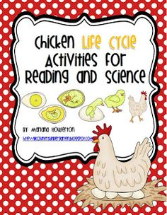 Butterfly and Chicken Life Cycles Activities and More!by Lil' Country Kindergarten