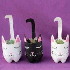 Beautiful kittens with echeverias in Yollotli Cactus Plastic Bottle Planter, Reuse Plastic Bottles, Plastic Bottle Crafts, Diy Bottle, Recycled Bottles, Soda Bottle Crafts, Soda Bottles, Diy Home Crafts, Garden Crafts