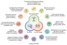 Permaculture is a design system which can help us make more appropriate choices. Permaculture was conceived of in the by David Holmgren and Bill Mollison,