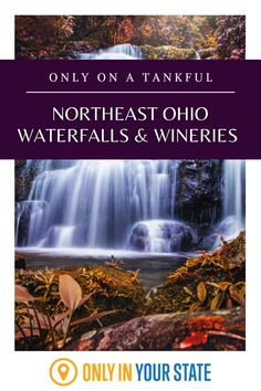 Discover some of the best wineries and vineyards and most beautiful waterfalls on this unique Northeast Ohio Road Trip. Destinations are near Cleveland, Lake Erie, and Western Pennsylvania. Day Trips In Ohio, Ohio Waterfalls, Outside Grill, Dry Red Wine, The Buckeye State, Lake Erie, Beautiful Waterfalls, Haunted Places, Covered Bridges