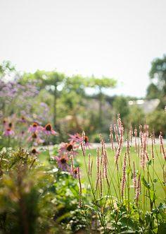 www.buytengewoon.nl landelijke-tuinen landelijke-tuin-met-klassieke-buitenruimte-in-elspeet.html