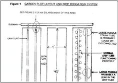 Drip Irrigation System Design   Google Search | Garden | Pinterest | Irrigation  System Design, Drip Irrigation And Drip Irrigation System